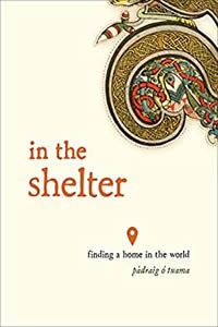 In the Shelter by Padraig O Tuama